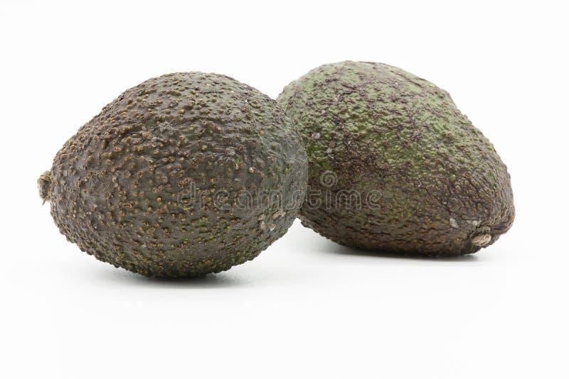 Twee avocado's, gehele vruchten stock fotografie