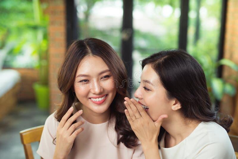 Twee Aziatische en vrouwenvrienden die babbelen gossipping stock afbeelding