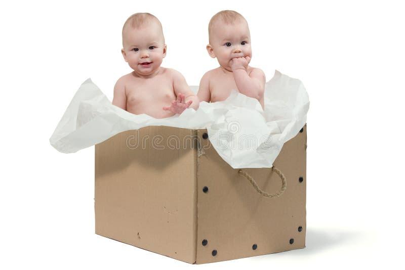 Twee babytweelingen in de doos stock afbeeldingen