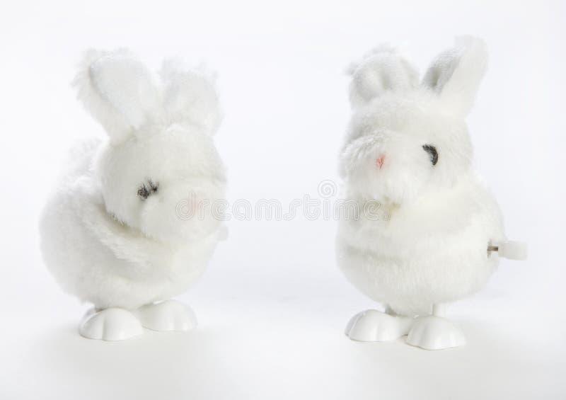 Twee beëindigen konijntjes stock afbeelding