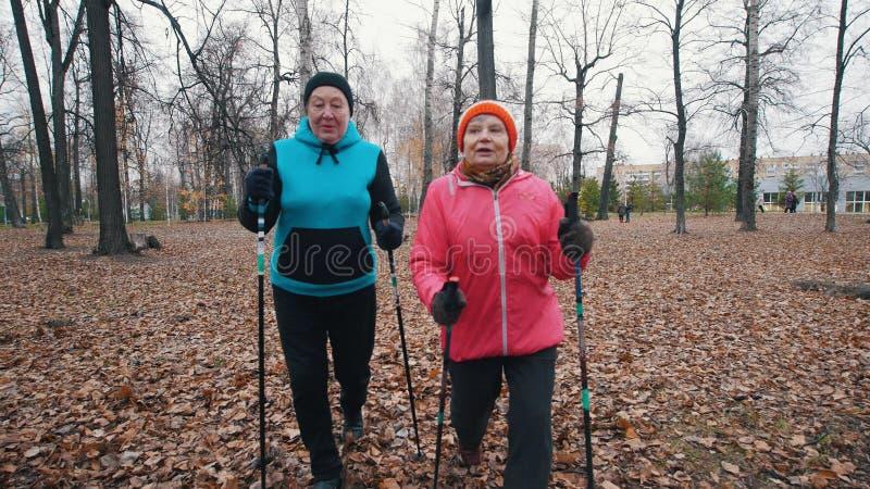 Twee bejaarden die op stokken van het noordse lopen op de recente herfst lopen stock foto