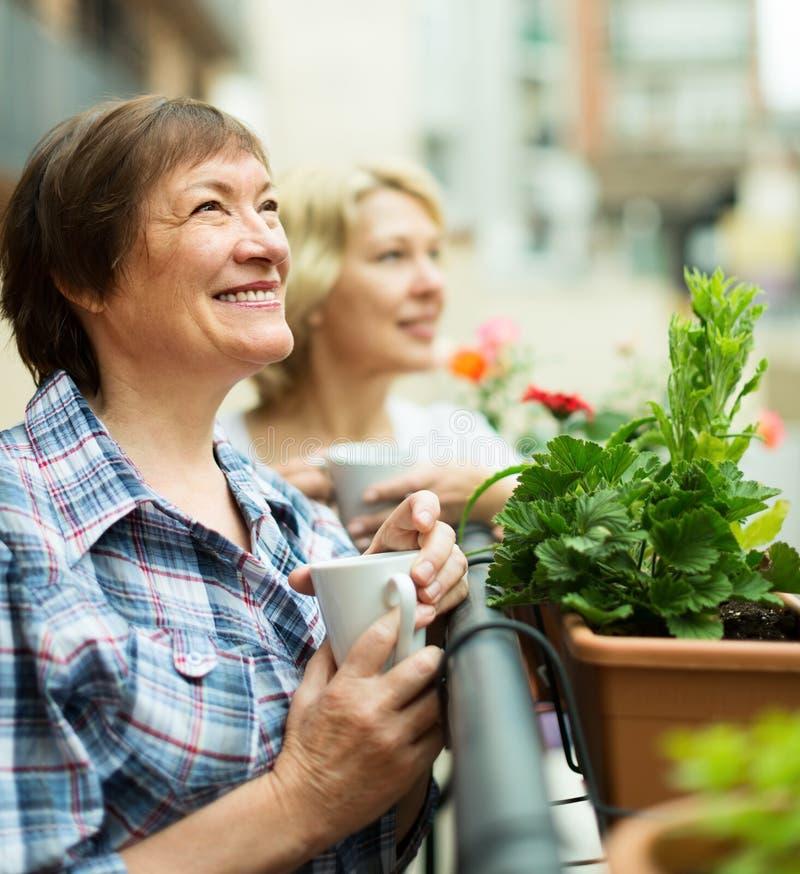 Twee bejaarden die thee drinken bij terras royalty-vrije stock foto's