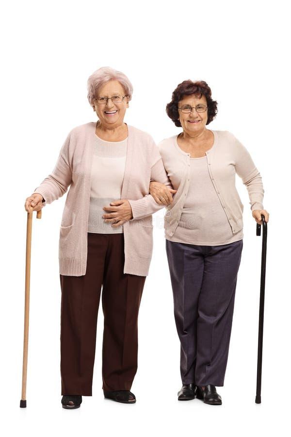 Twee bejaarden met het lopen van riet royalty-vrije stock foto's