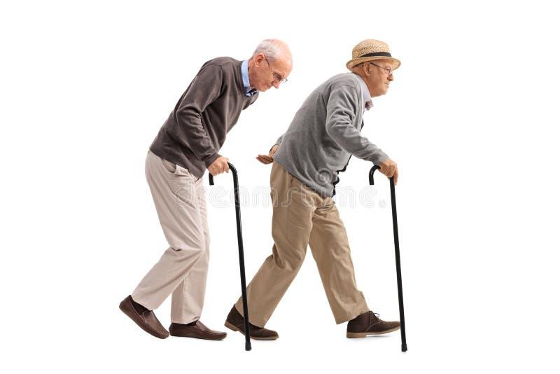 Twee bejaarden met riet het lopen royalty-vrije stock afbeeldingen