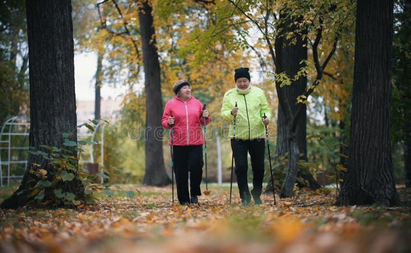 Twee bejaarden van het kogelvisjasje zijn betrokken bij het Skandinavische lopen in het park in off-road in het midden van de bom royalty-vrije stock foto's