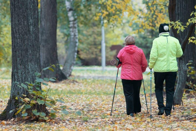 Twee bejaarden zijn betrokken bij het Skandinavische lopen in het park Achter mening royalty-vrije stock foto's
