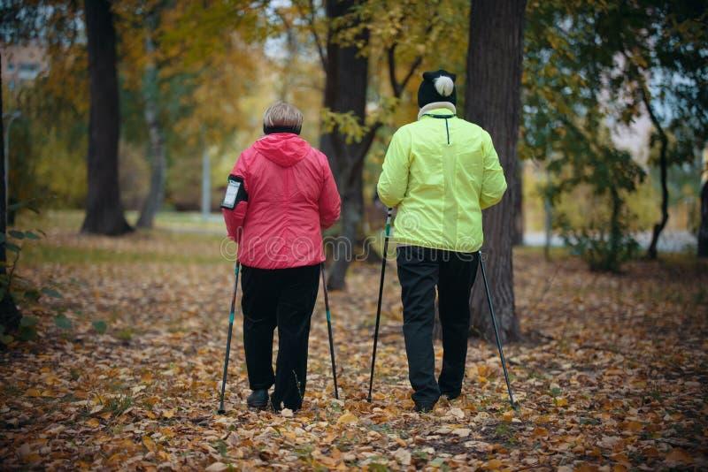 Twee bejaarden zijn betrokken bij het Skandinavische lopen in het park in off-road Achter mening royalty-vrije stock fotografie