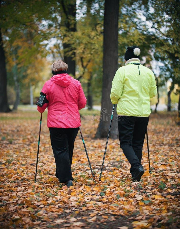 Twee bejaarden zijn betrokken bij het Skandinavische lopen in het park in off-road in het midden van de bomen Achter mening stock foto's