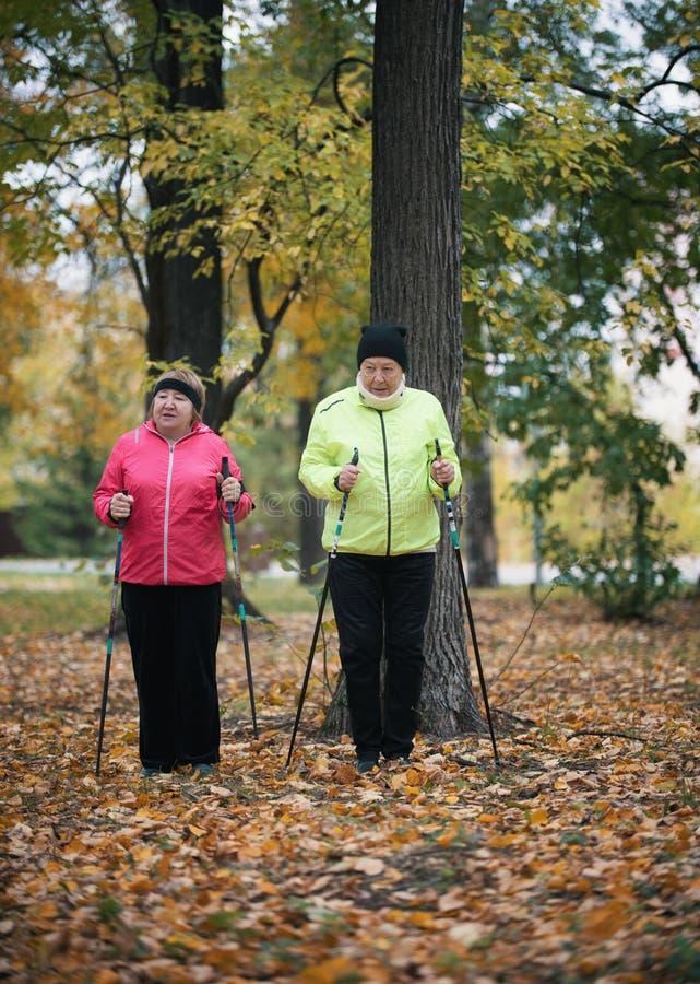 Twee bejaarden zijn betrokken bij het Skandinavische lopen in het park op bladeren in het midden van de bomen royalty-vrije stock foto