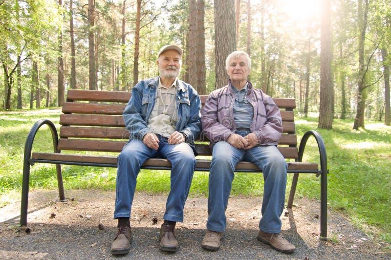 Twee bejaarden zitten op een parkbank, rust het Bejaarde gekleed in jasjes in dennenbos royalty-vrije stock afbeelding