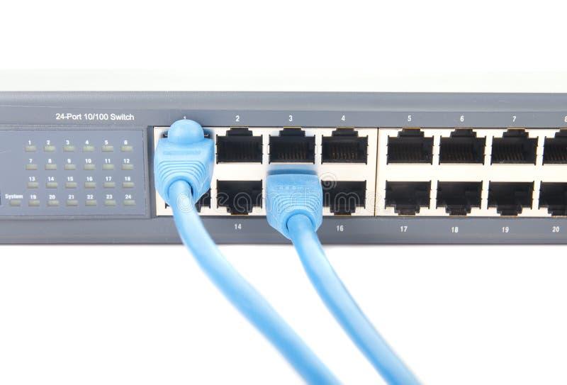 Twee Blauwe kat-5 Kabels die in de Schakelaar van het Netwerk worden gestopt royalty-vrije stock foto
