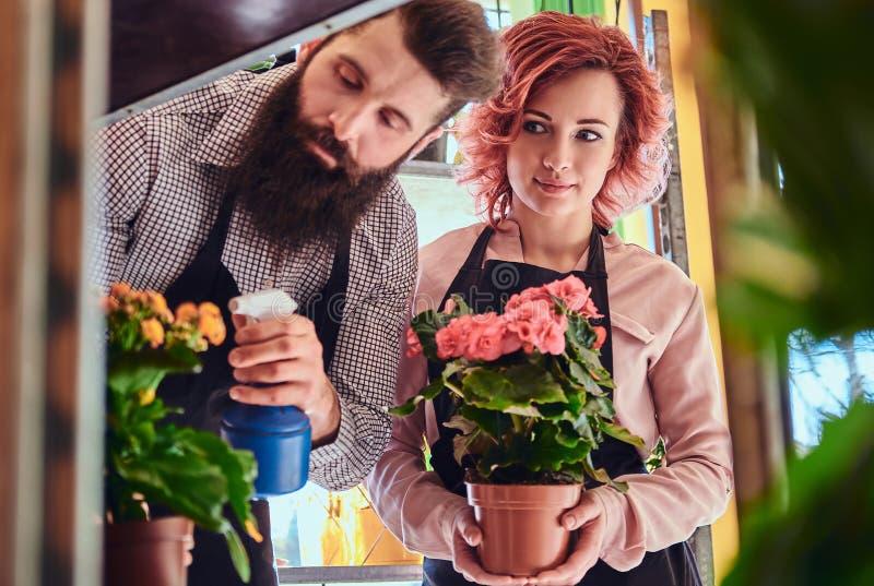 Twee bloemisten, mooi roodharige vrouwelijk en gebaard mannetje die uniformen dragen die in bloemwinkel werken royalty-vrije stock fotografie