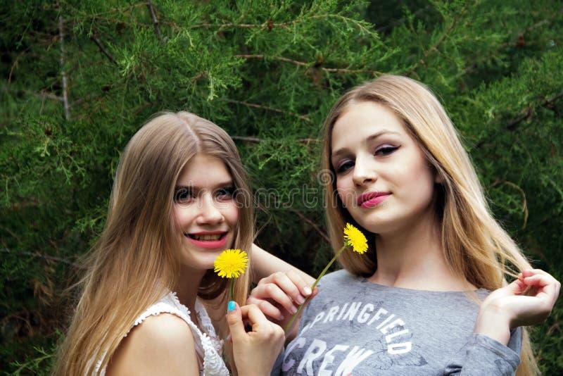 Twee blondemeisjes met paardebloemen stock afbeelding