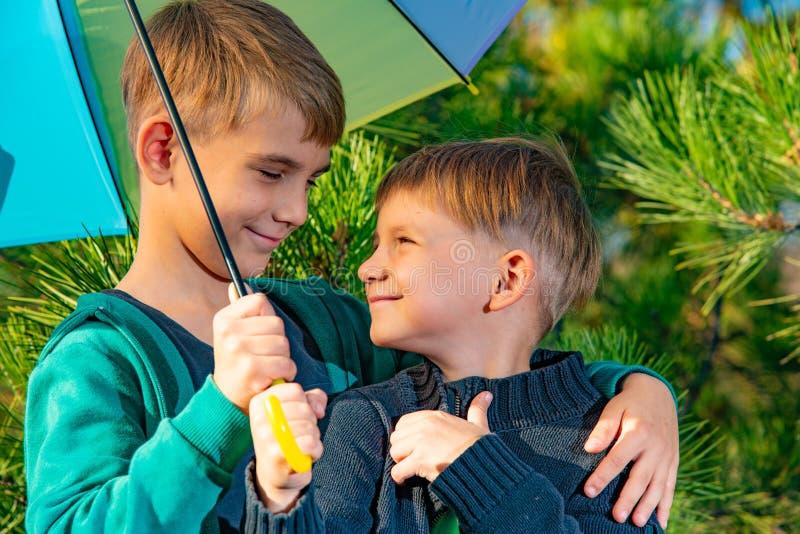 Twee broers bevinden zich in een greep onder een heldere multi-colored paraplu en bekijken elkaar in een pijnboombos stock foto