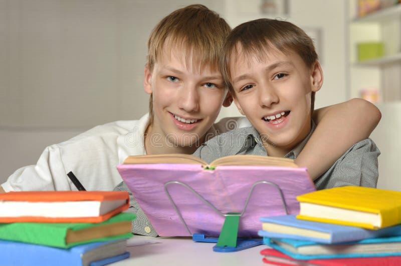 Twee broers die thuiswerk doen stock afbeelding