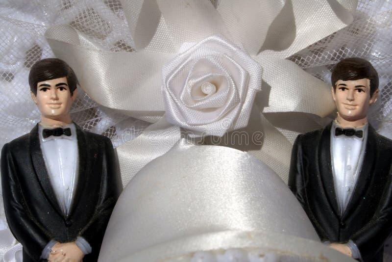 Twee bruidegoms vrolijk huwelijk stock foto