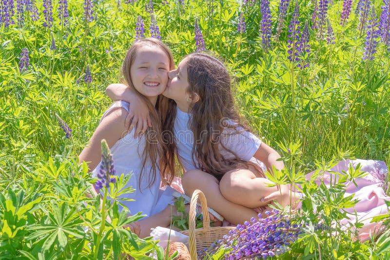 Twee charmante jonge meisjes met lang haar op het gebied met lupines Het tienermeisje kust haar vriend Meisjes, het concept stock fotografie
