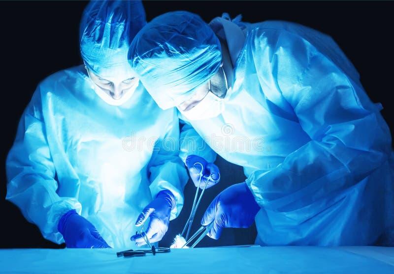 Twee chirurgen, een man en een vrouw, voeren chirurgie uit om prostate adenoma te verwijderen en varicocele, fibroadenoma royalty-vrije stock afbeeldingen
