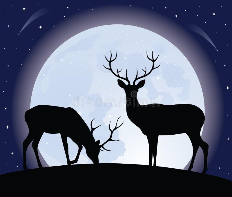 Twee deers. vector illustratie