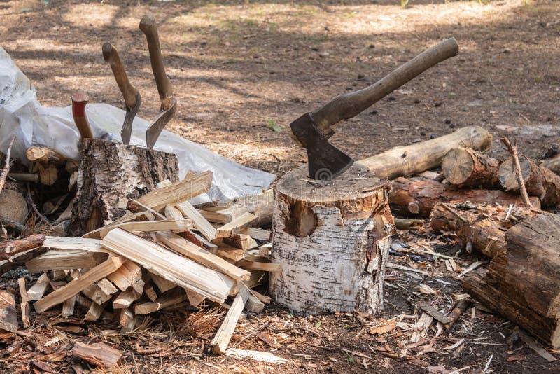 Twee die assen in de stomp worden geplakt De assen zijn klaar voor het hakken van hout Houtbewerkingshulpmiddel Het reizen, avont royalty-vrije stock foto's