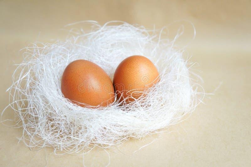 Twee die eieren in het nest worden gelegd royalty-vrije stock fotografie