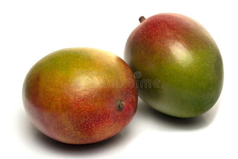 Twee die mango's op witte dichte omhooggaand worden ge?soleerd als achtergrond royalty-vrije stock afbeeldingen