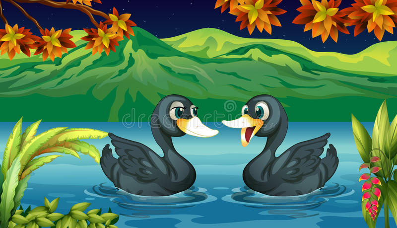Twee eenden in de rivier stock illustratie