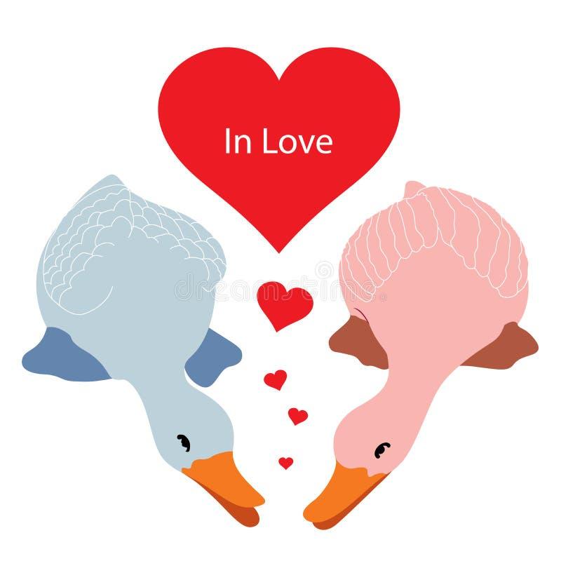 Twee eenden in liefde vector illustratie