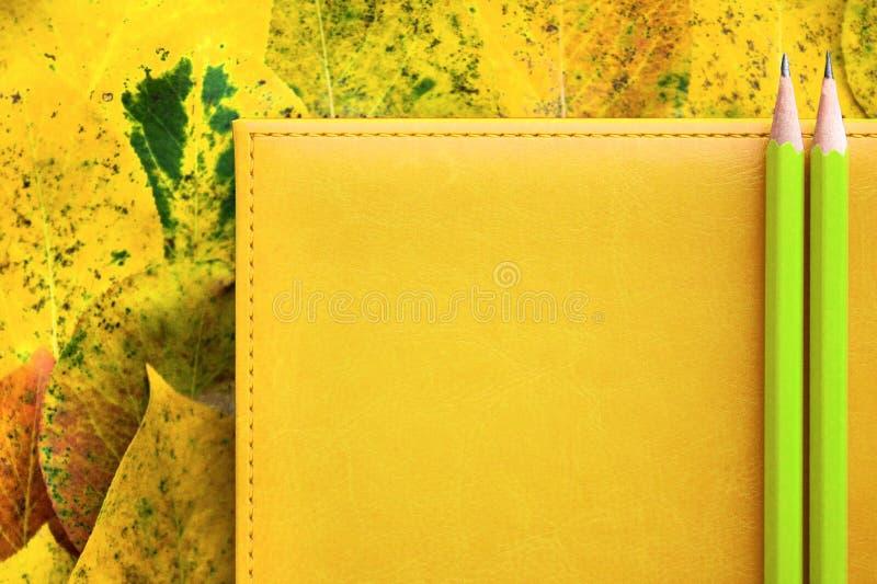 Twee eenvoudige potloden zijn op een gele leeragenda voor nota's en op een stapel van de herfst geel gebladerte, terug naar schoo stock afbeelding