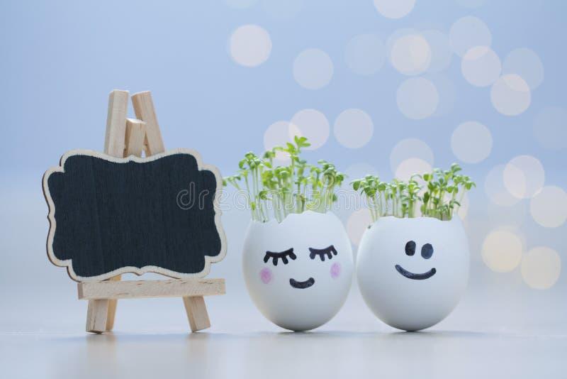 Twee eierschalenlachebekjes met tuinkersspruiten Pasen-eierschaalplanters stock afbeeldingen