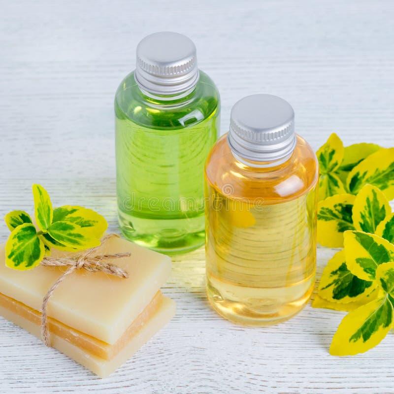 Twee flessen natuurlijke haarshampoo en met de hand gemaakt organisch haar zepen bar met installaties in stock fotografie