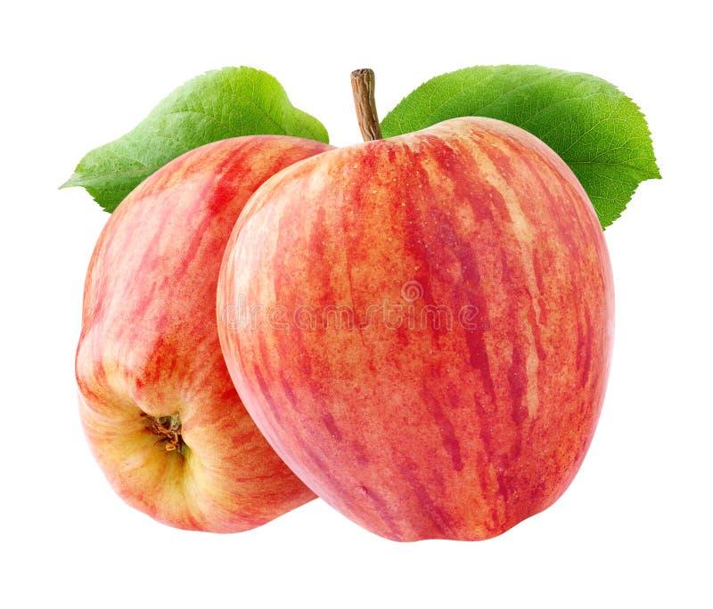 Twee geïsoleerde rode appelen stock afbeelding