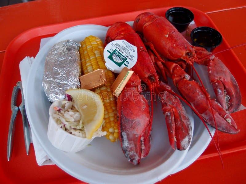 Twee Gekookte Maine Lobsters stock fotografie