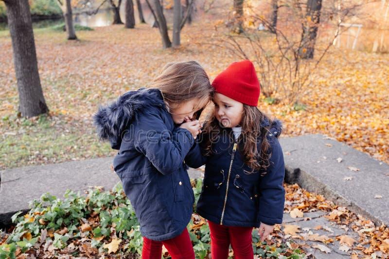 Twee gelukkige kinderen die in de herfstpark koesteren Sluit omhoog het zonnige portret van de levensstijlmanier van twee mooie K stock afbeelding