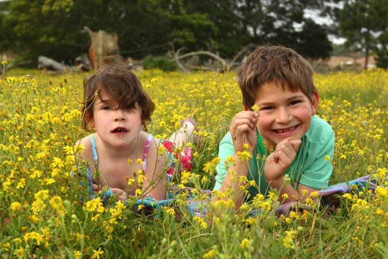 Twee gelukkige kinderen in een weide stock fotografie