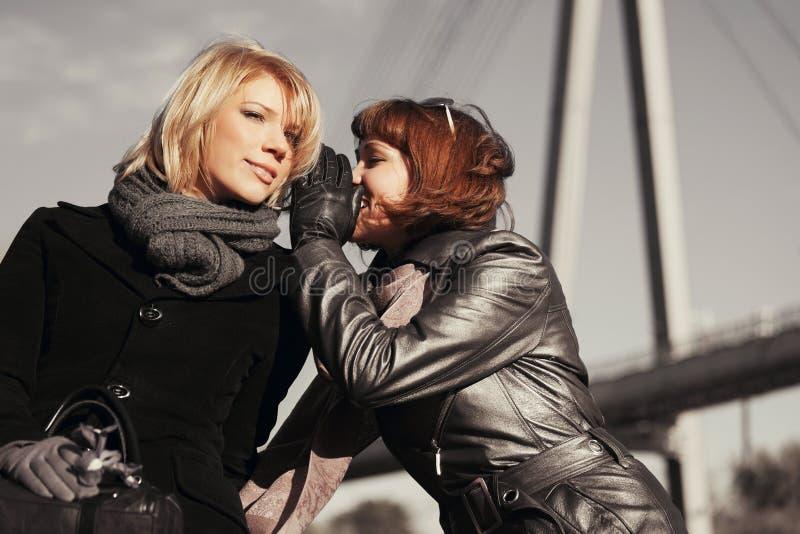 Twee gelukkige maniervrouwen die geheimen teeling openlucht stock afbeelding