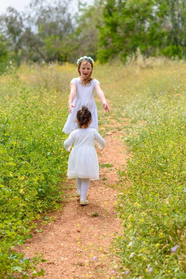 Twee gelukkige meisjes die het lopen op de groene weide spelen openlucht royalty-vrije stock foto's