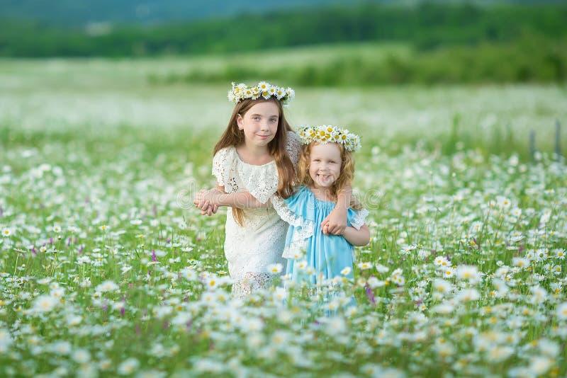 Twee gelukkige meisjes op gebied De zusters genieten van de vakantie van de de zomertijd in dorp stock foto's