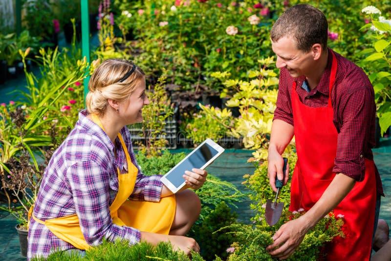 Twee gelukkige tuinlieden op het werk royalty-vrije stock afbeeldingen