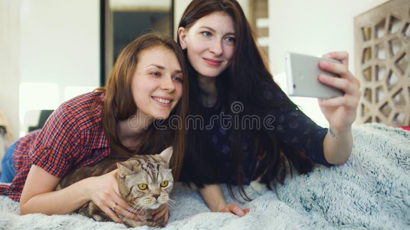 Twee gelukkige vrouwenvrienden die in bed liggen en selfie met kat maken en hebben pret thuis op bed stock fotografie