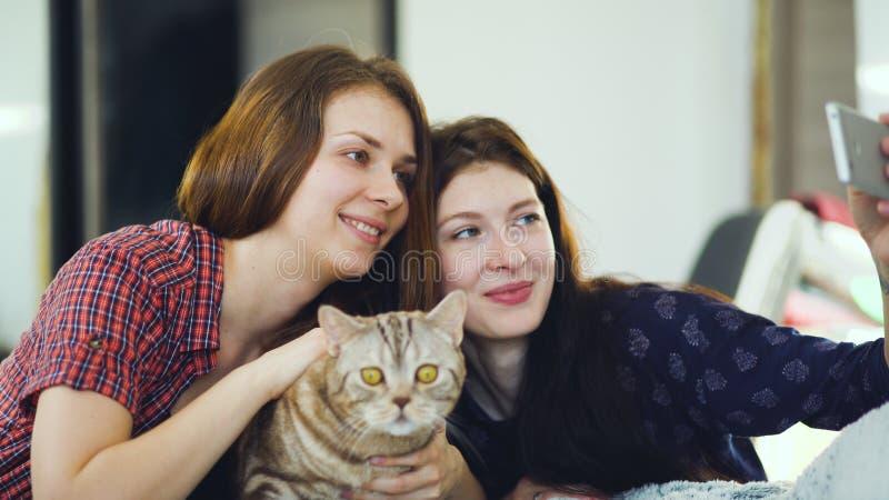 Twee gelukkige vrouwenvrienden die in bed liggen en selfie met kat maken en hebben pret thuis op bed royalty-vrije stock fotografie