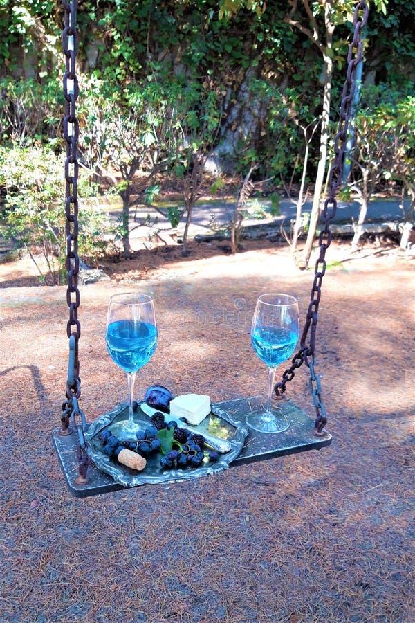 Twee Glazen van Blauwe In Wijn met Druiven en Kaas op een Schommeling royalty-vrije stock foto