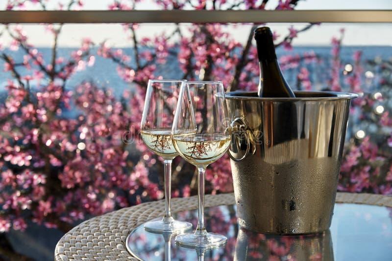 Twee glazen witte koude wijn stock foto's
