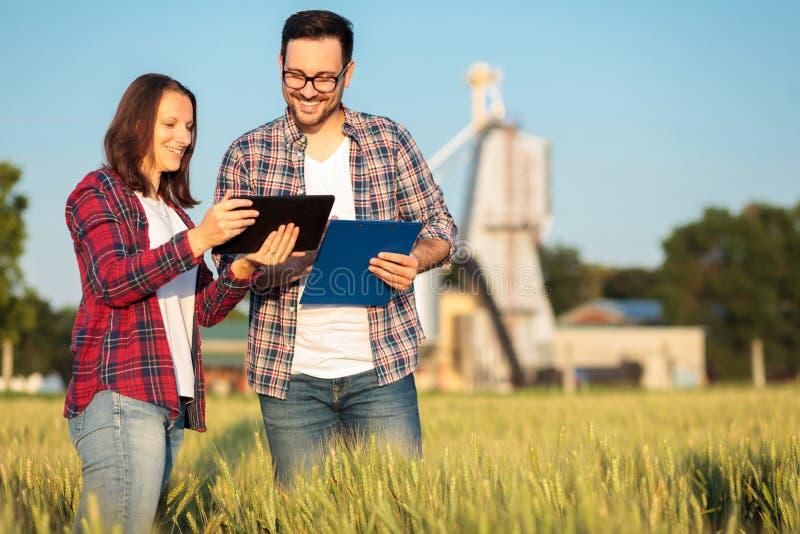 Twee glimlachende gelukkige jonge mannelijke en vrouwelijke agronomen of landbouwers die op een tarwegebied spreken stock fotografie