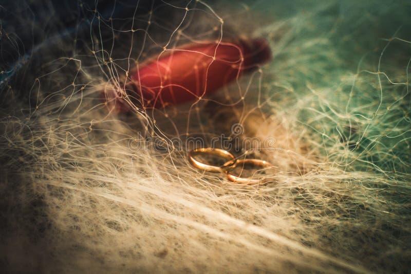 Twee gouden die trouwringen in netten worden verward royalty-vrije stock afbeeldingen