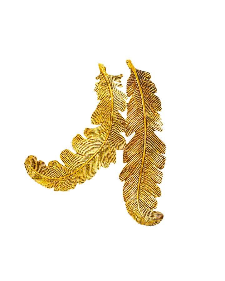 Twee gouden geïsoleerdee veren stock fotografie