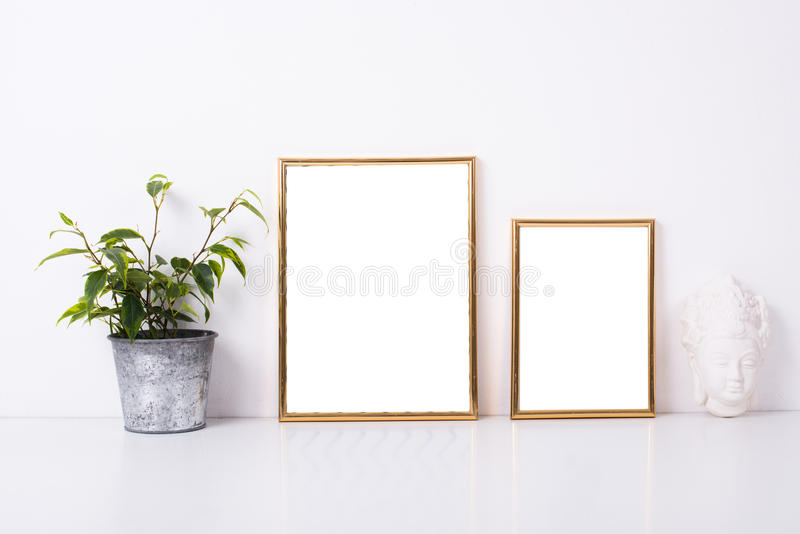 Twee gouden kadersmodel royalty-vrije stock fotografie