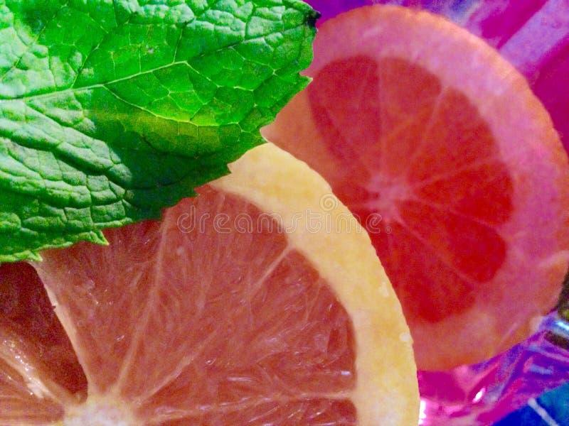 Twee grapefruit volgende Ti elkaar royalty-vrije stock afbeeldingen