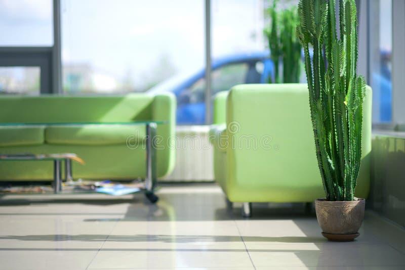 Twee groene comfortabele banken in het binnenland royalty-vrije stock afbeeldingen
