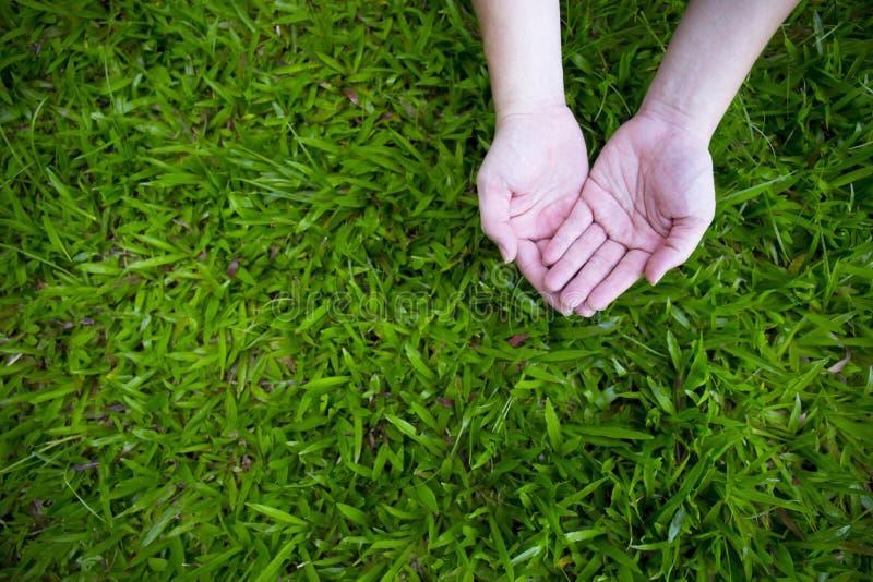 Twee handen met groen gras royalty-vrije stock afbeelding